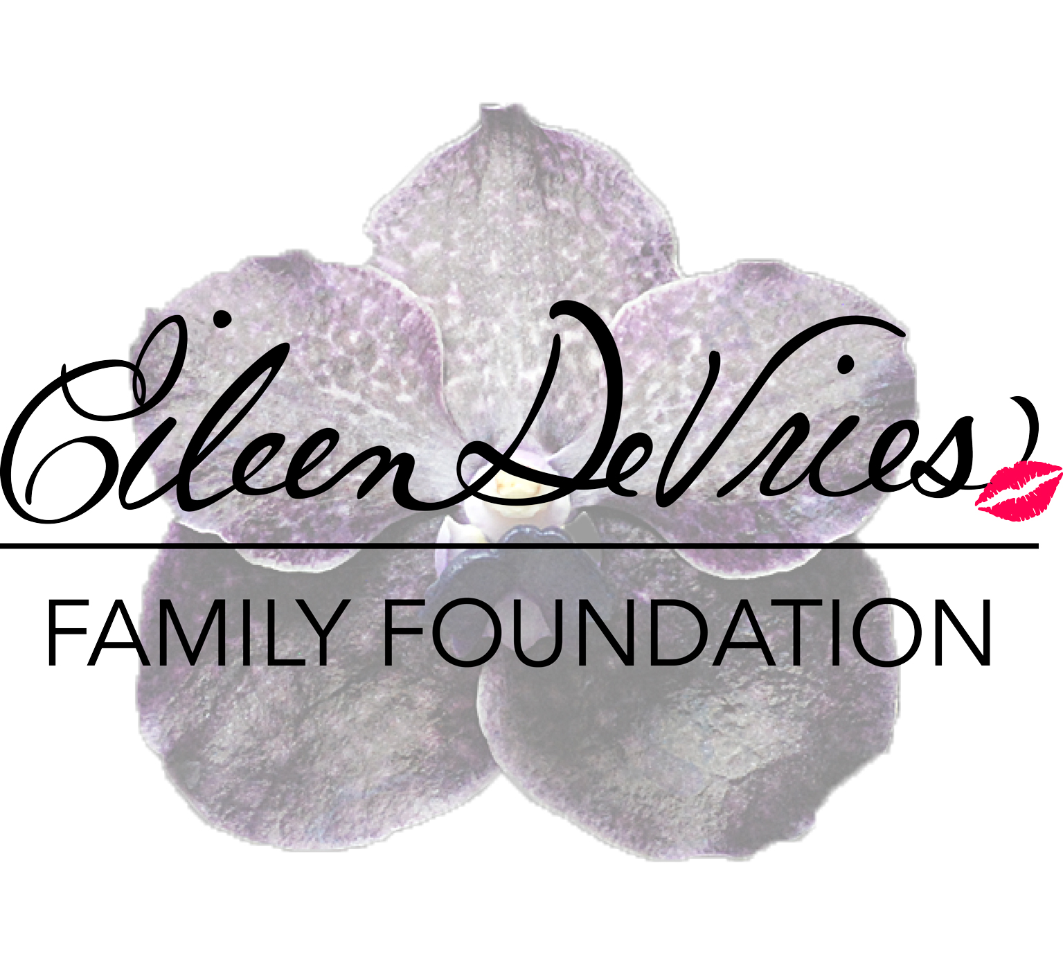 DeVries Family Foundation